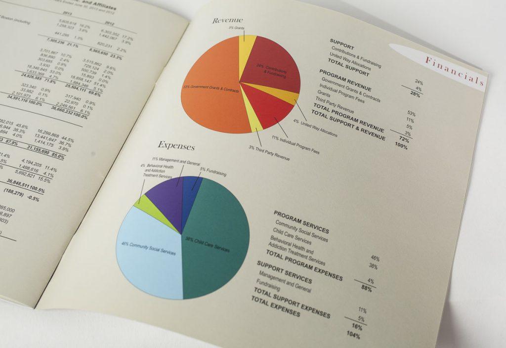 CCAB Annual Report 13 D